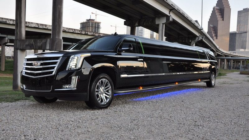Discover Toronto at its best with Limo bus: nightlife and gastronomy